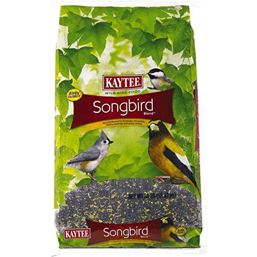 Kaytee Songbird Wild Bird Seed, 35-Pound