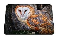 26cmx21cm マウスパッド (フクロウ美しい色顔木鳥捕食者) パターンカスタムの マウスパッド