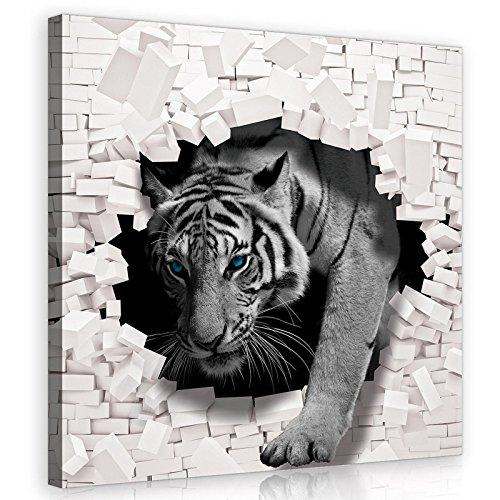 FORWALL Bilder Canvas 3D Tiger kommt aus der Wand O2 (80cm. x 80cm.) Leinwandbilder Wandbild AMFPP10400O2