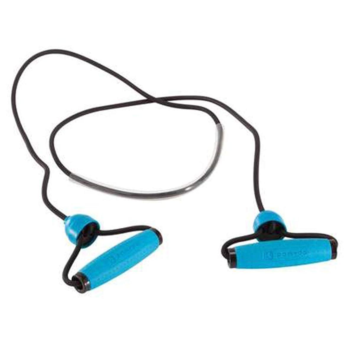 余計な何よりも北米多機能ワードプルロープホームラリーフィットネス弾性ロープラテックスチューブアームの力の胸 (色 : 青)