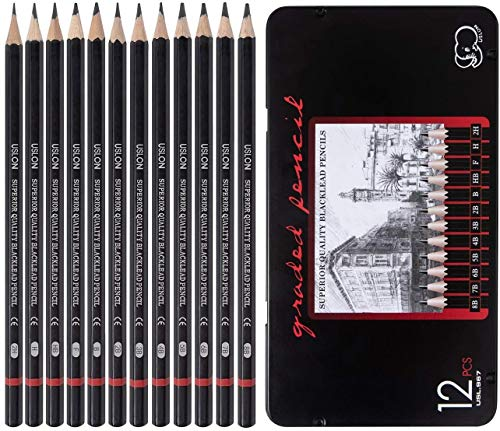 Professional Drawing Sketching Pencil Set - 12 Pieces Art Drawing Graphite Pencils(8B - 2H), Ideal for Drawing Art, Sketching, Shading, Artist Pencils for Beginners & Pro Artists, in Tin Box