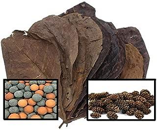 Invert Aquatics 5 Catappa Leaves, 25 Alder Cones & 10 Mineral Balls for Aquariums (Indian Almond Leaves, Terminilia)