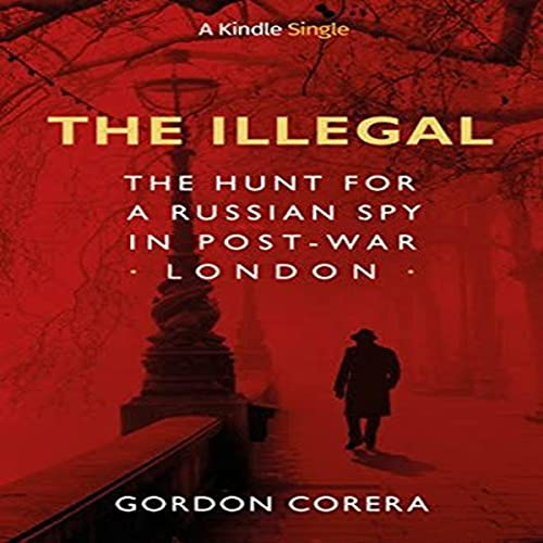 The Illegal cover art