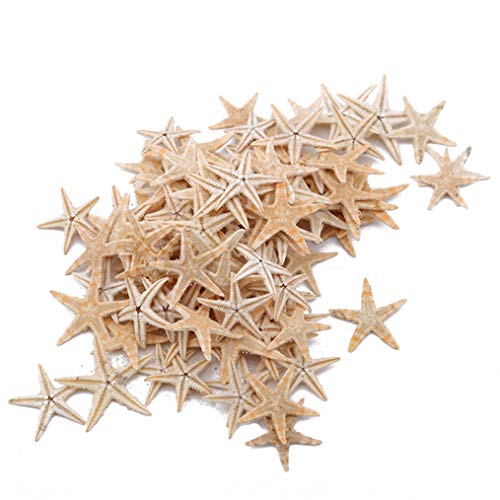 Eleusine 100 Stück Mini Seestern Gebleicht Deko Seestern DIY Basteln Weihnachten Hochzeit Maritime Dekoration