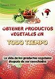 Obtener productos vegetales en todo tiempo: La vida de los productos vegetales después de ser cosechados