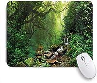 ZOMOY マウスパッド 個性的 おしゃれ 柔軟 かわいい ゴム製裏面 ゲーミングマウスパッド PC ノートパソコン オフィス用 デスクマット 滑り止め 耐久性が良い おもしろいパターン (ネパールの小道の熱帯雨林野生生物春の植物と石水分)