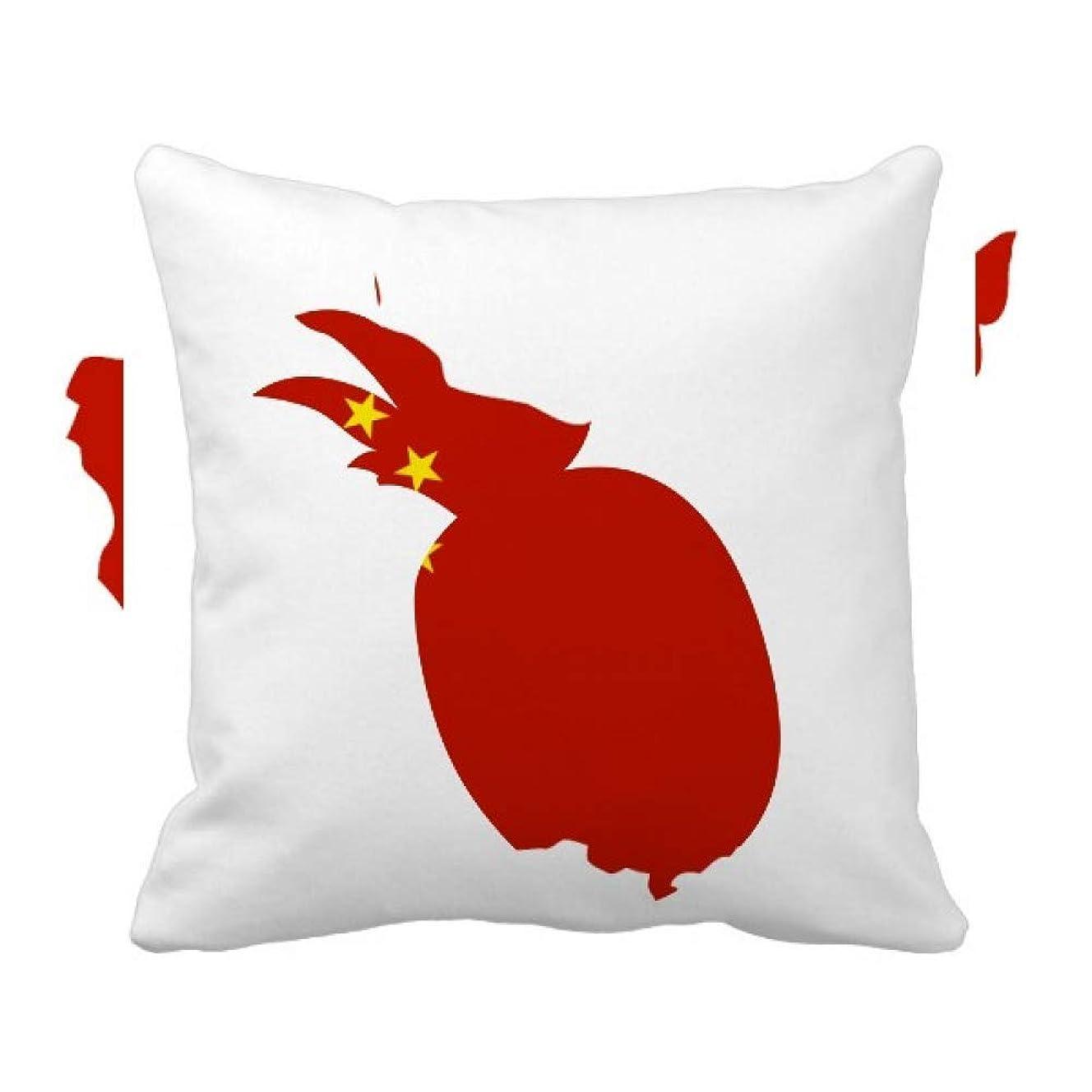 韓国評議会やがて中国の国旗で作った地図 パイナップル枕カバー正方形を投げる 50cm x 50cm