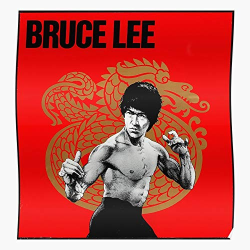 US210PT Fu Lee Arts Martial Dragon Tattoos Kung Chinese Ink Bruce Tattoo for Home Decor Wall Art Print Poster