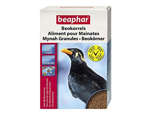 beaphar Beokörner, Vogelfutter für alle Beoarten, Leckere Vollnahrung, 1 kg Beofutter