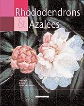 Rhododendrons et azalées (Main Verte)