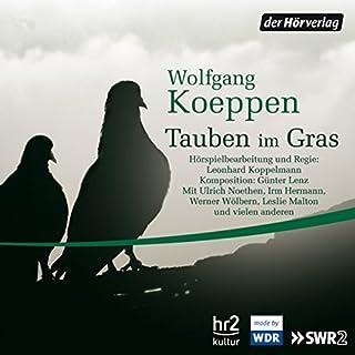 Tauben im Gras Titelbild