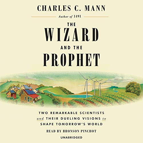 Page de couverture de The Wizard and the Prophet