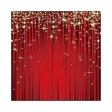 Qinunipoto 1.5x1.5m 背景布 写真の背景 写真撮影用 流れ星と輝かしい背景 写真背景 赤いカーテンの背景 芸術的背景 撮影布 ファッション撮影 誕生日 スタジオのプロ背景幕 子供用 新生幼児用 ビニール 休日のお祝い商業イベント製品プロモーション写真背景ビデオライブ背景装飾