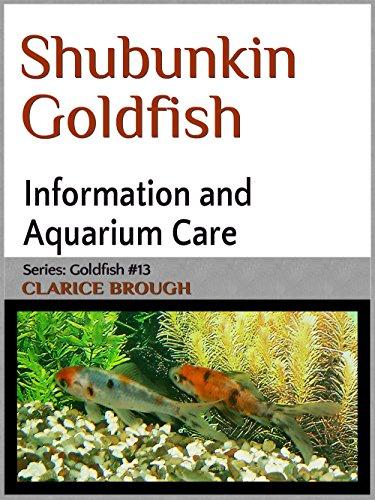 Shubunkin Goldfish (English Edition)