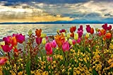 Rompecabezas Niños Y Adultos 500 Piezas, Lago De Garda Y Tulipanes En Primavera Rompecabezas para Niños 52X38Cm