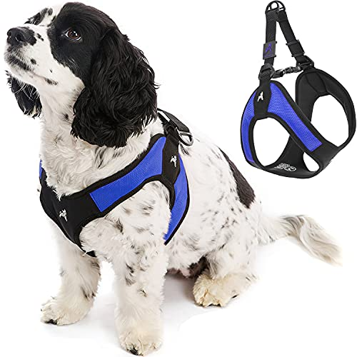 Gooby Escape Free Easy Fit Harness - Blue, Medium - No Pull Step-in Patented Small Dog Harness with Quick Release Buckle - Perfect On The Go No Pull Harness for Small Dogs or Medium Dog Harness