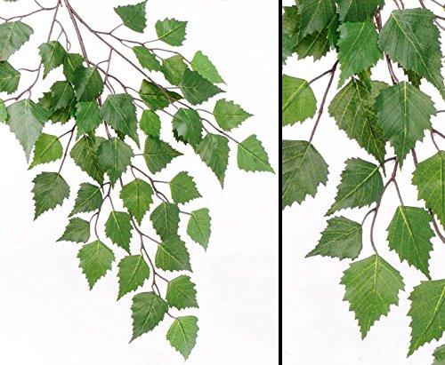 kunstpflanzen-discount.com Birken Dekozweig mit 48 Blätter, Länge 64cm - Künstlicher Birkenzweig Birkenblatt Zweig