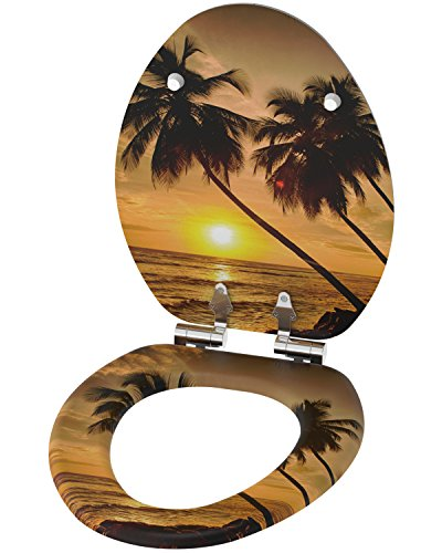 beautiful decorative toilet seats for sale