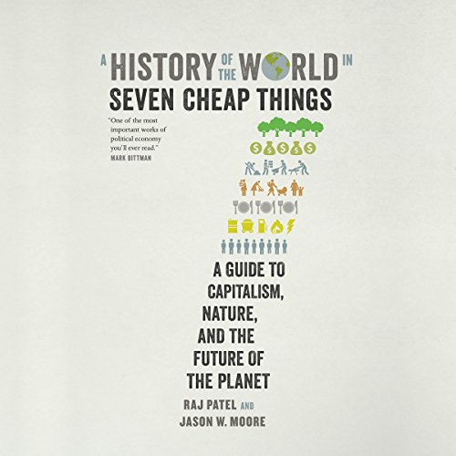 A History of the World in Seven Cheap Things audiobook cover art