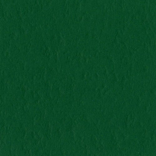 Bazzill Basics Paper T19-5414 Prismatic Cardstock, 25 Sheets, 12 by 12-Inch, Classic Green