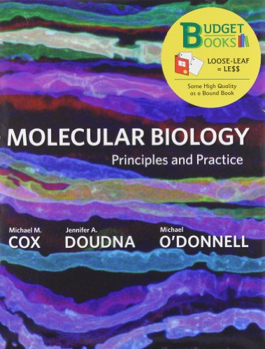 Molecular Biology: Principles and Practice (Budget Books)