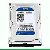 HARD DISK 250GB WESTERN DIGITAL 3,5' SATA 7200RPM per PC,NAS,VIDEOSORVEGLIANZA (RICONDIZIONATO)