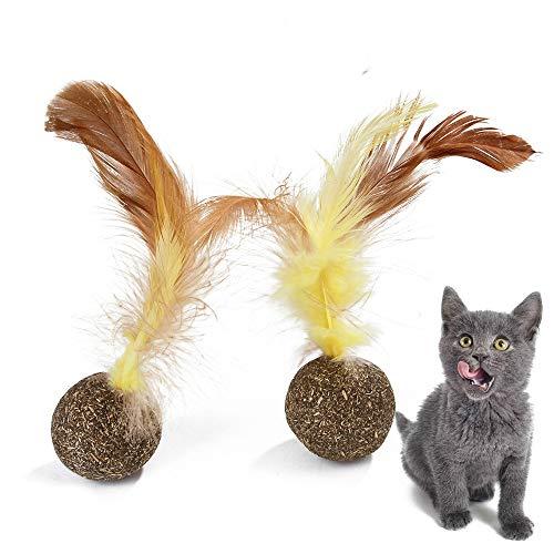 Juguete para mascotas duradera La eliminación del juguete divertido del gato de pelo interactivo bola de menta natural del gato Bola Snack-Molar fuentes del animal doméstico del gato del gato menta Di