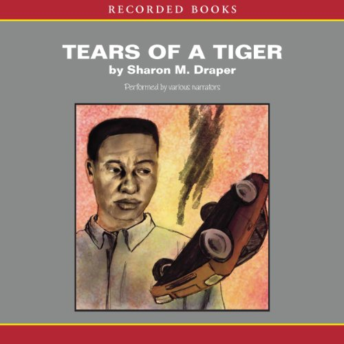 Tears of a Tiger audiobook cover art