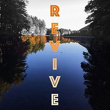 Revive (feat. Big R3D)