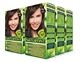 Naturtint Permanent Hair Color 4N Natural Chestnut (Pack of 6), Ammonia Free, Vegan, Cruelty Free, up to 100% Gray...