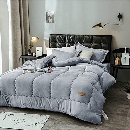 LEILEI Flannel quilt thick coral fleece velvet feather quilt,magic velvet,warm winter blankets,bedding,220 * 240cm 4kg