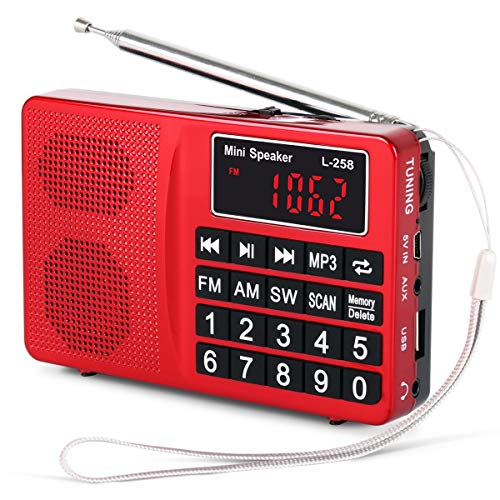 PRUNUS L-258 SW FM AM(MW) MP3 Digital Radio Portable and Mains, Small Radio Rechargeable with Bass Speaker, Large Button and Display. Stores Stations Automatically.(NO Manual Memory Stations Function)