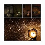 Star Sky Projection Lamp, Celestial Star Cosmos Projector Starry Sky Night Light,Star Celestial Projector Lights,Romantic Star Night Lights for Children Adults Bedroom,Shipping from USA