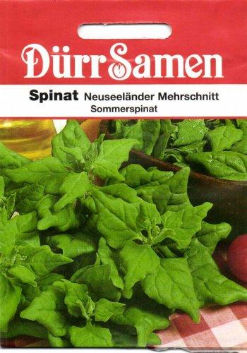 Spinatsamen - Spinat Neuseeländer von Dürr-Samen