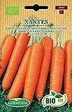 Germisem Orgánica Nantes Semillas de Zanahoria 4 g