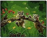 RONGFUQIANG Pintura al óleo Digital Pintar numeros Adultos DIYIlustración de...