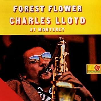 Forest Flower: Charles Lloyd At Monterey