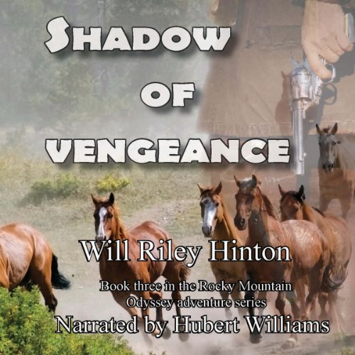 Shadow of Vengeance audiobook cover art