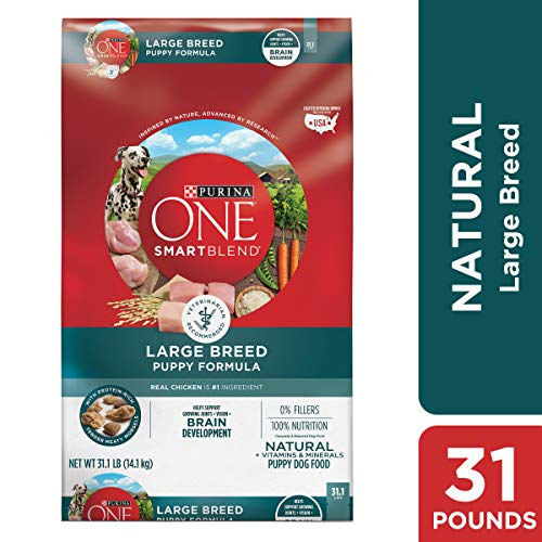 Purina ONE SmartBlend Puppy Large Breed Formula Dry Dog Food - (1) 31.1