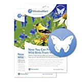 WindowAlert Butterfly Anti-Collision Decal - UV-Reflective Window Decal to Protect Wild Birds from Glass Collisions, 2-Pack