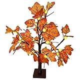 Aiboria 24 LED Tischplatte beleuchtet Ahornbaum Licht, batteriebetriebene Thanksgiving...