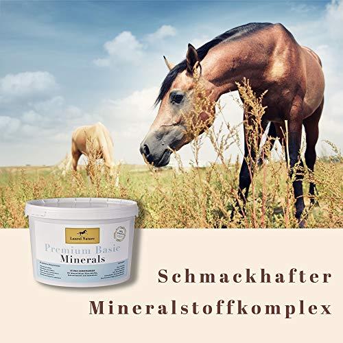 Laurel Nature Premium Basic Minerals - Mineralfutter für Pferde - 3kg, optimale Grundversorgung, getreidefrei, ohne Melasse