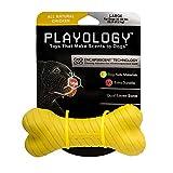 Playology Chicken-Scented Bone