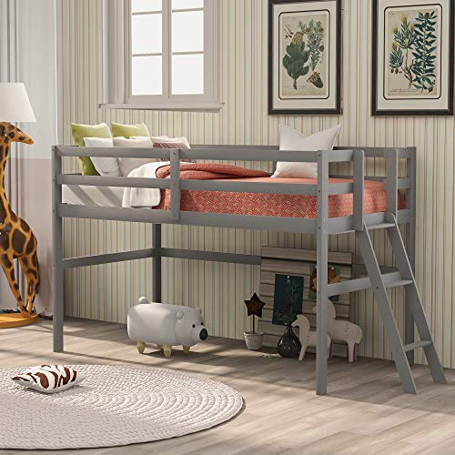 Wood Twin Loft Bed for Kids and Toddlers Low Loft Bed Frame with Ladders and Guard Rails, No Box Spring Needed,Twin Size