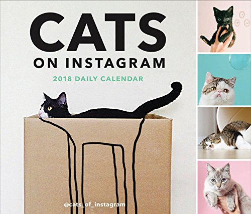 Cats on Instagram 2018 Daily Calendar