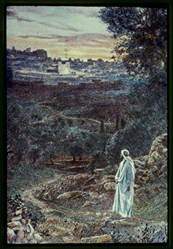 Historic Photos Foto de 1950 Lucas 21:37. y en el día enseñaba en el templo; y de noche salió, y moró en el monte que se llama Monte de los Olivos Lugar: Jerusalén