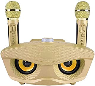 Portable Karaoke Machine, Wireless Bluetooth Speaker with 2 Mircophones Home Karaoke Support AUX TF Card U Disk FM Radio f...