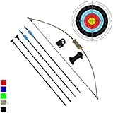 Funtress Archery Bow and Arrow Set for Kids Children Youth Outdoor Team Sports Game Hunting Toy Gift Bow Kit...