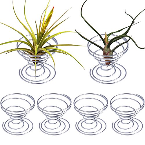 Shappy 6 Pieces Air Plant Stand Airplant Container Tillandsia Holder Stainless Steel Plant Display Racks, Silver