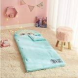 Idea Nuova Disney Frozen Elsa Hooded Sleeping Bag with Zip Around Closure, 26'x46', Ages 3+